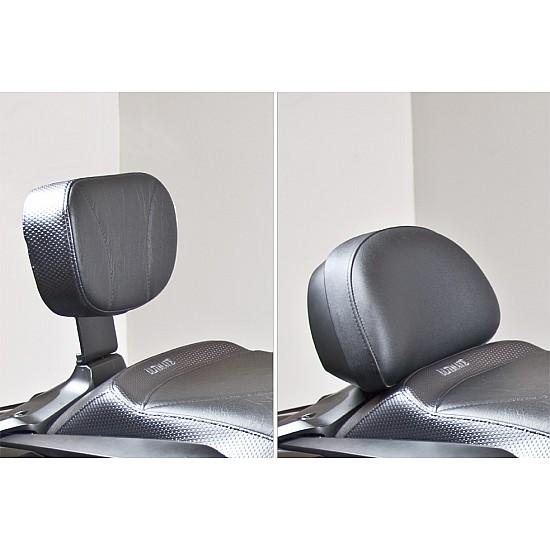 F6B Passenger Backrest Pad and Bracket - Deluxe Model