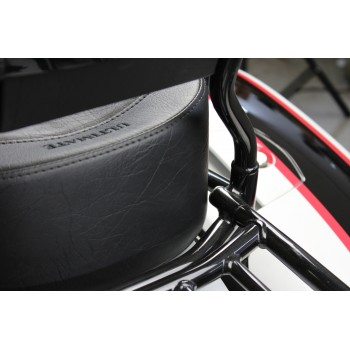 Challenger Seat and Sissy Bar Pad (2020 and Newer)